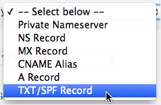TXT/SPF Record drop-down list option