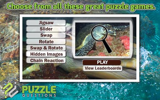 Ocean Turtles Puzzle Games
