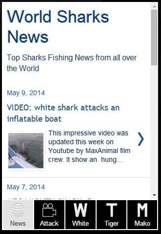 World Shark News