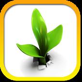 Medicinal plants reference Fr
