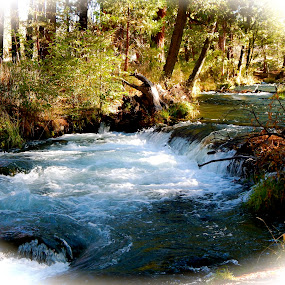 Hat Creek, CA by Sherry Gardner - Landscapes Waterscapes