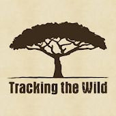 Tracking the Wild