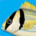 Marine Fishes - ID Guide icon
