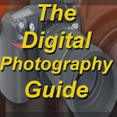 The Digital Photography Guide
