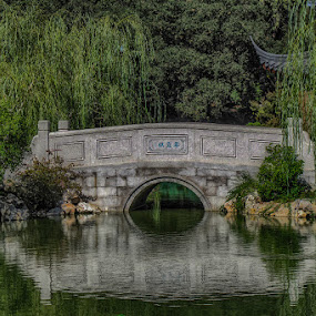 Huntington Gardens by Zetsu Nawa - Buildings & Architecture Bridges & Suspended Structures ( bridge, pond, garden, chinese, huntington,  )