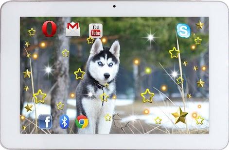 Husky Sounds HD live wallpaper