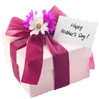 Mother's Day Cards 2.0