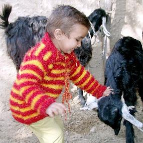 Cute Cuty.. by Raj Verma - Babies & Children Child Portraits
