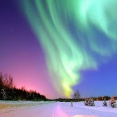 Polar light live wallpaper