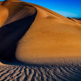 Lines in late light by Johan Jooste Snr - Landscapes Deserts ( sand, dunes, namib desert, desert, sand-patterns, namibia, light and shadow )