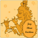 Krishna Meditation Mantra icon