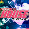 House Melodics & Bass for AEM icon