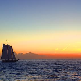 Key West Sunset by Phil Olson - Landscapes Sunsets & Sunrises ( keys, florida, sunset, key west, sail boat,  )