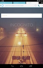 Javelin Browser Screenshot 17