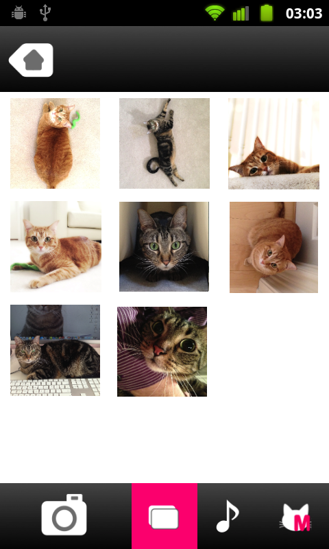 CatPix- screenshot