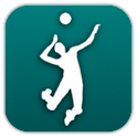 Volleyball Fan logo