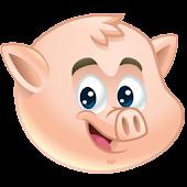 Pig Memory