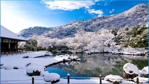 冬季最好的圖片