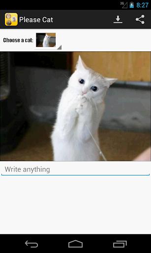 してください猫 - 笑猫