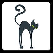 Creative Cat Apps
