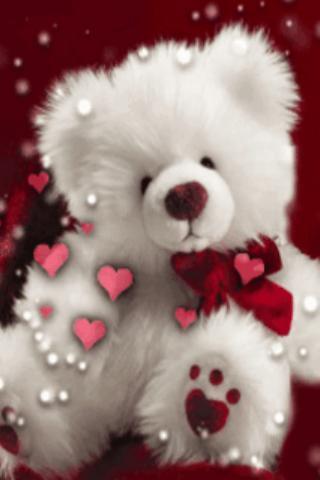 Loving Little Bear Live Wallpa