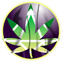 Purple Swag Theme icon
