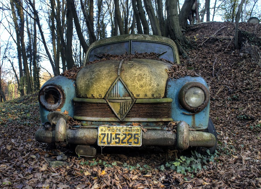 fading in nature by Greg Warnitz  - Transportation Automobiles ( car, urban, nature, decay, abandoned )