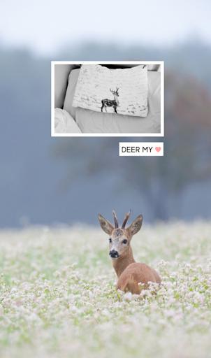 deer my 카카오톡 테마