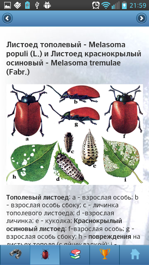 EcoGuide: Forest Insect Pests- screenshot