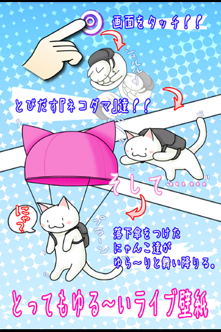 にゃんこ落下傘