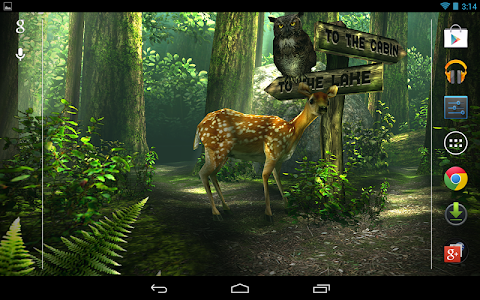Forest HD screenshot 0