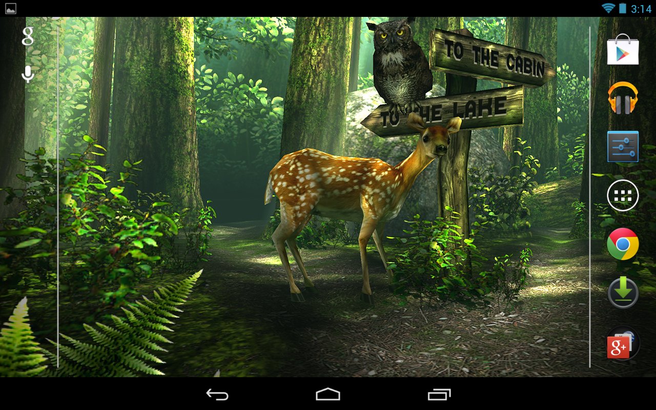 forest hd apk 1 6 1 download free personalization apk download