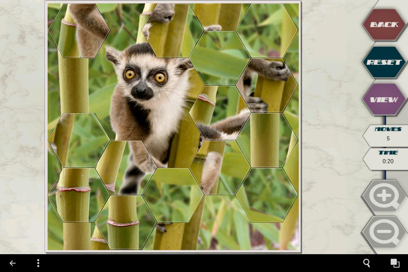HexSaw - Zoo - screenshot