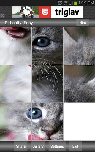 拼图:可爱的动物