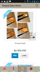 Penjual Batu Mulia (Gemstones) screenshot 3