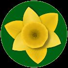 Весенние цветы icon