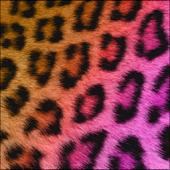 Pretty Cheetah Keyboard Skin