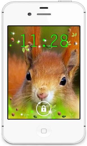 Squirrels Nature livewallpaper