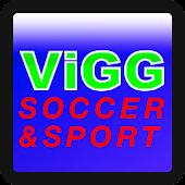 Soccer Winner Forecast 2013