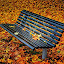 waiting for the leaves to fall by Stine Engelsrud - City,  Street & Park  City Parks ( public, bench, furniture, object, fall, color, colorful, nature )
