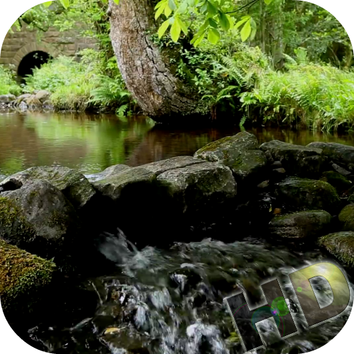 Rivers Video Live Wallpaper file APK Free for PC, smart TV Download