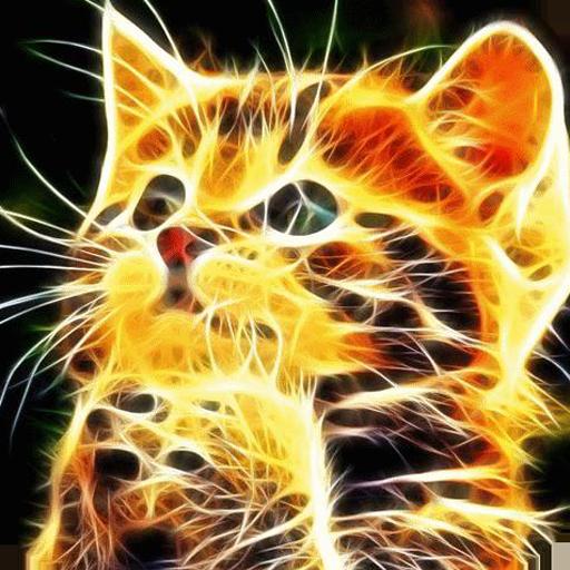 Sparkling kitten LWP 個人化 App LOGO-硬是要APP