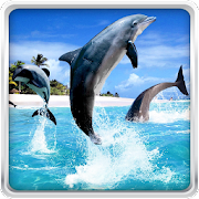 App Dolphin HD Live Wallpaper APK for Windows Phone