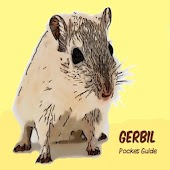 Gerbil Pocket Guide