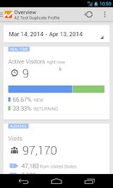 Google Analytics Screenshot 1