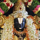 Tirupati Bala Ji Darshan LWP