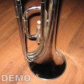 MB Horn demo for Caustic