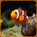 Aquarium Fish Live Wallpaper icon