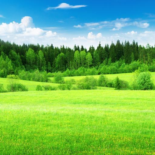 放寬農村 - 自然的聲音 LOGO-APP點子