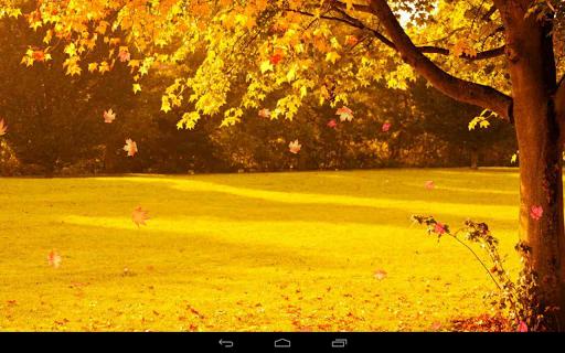 Autumn Wallpaper screenshots 12
